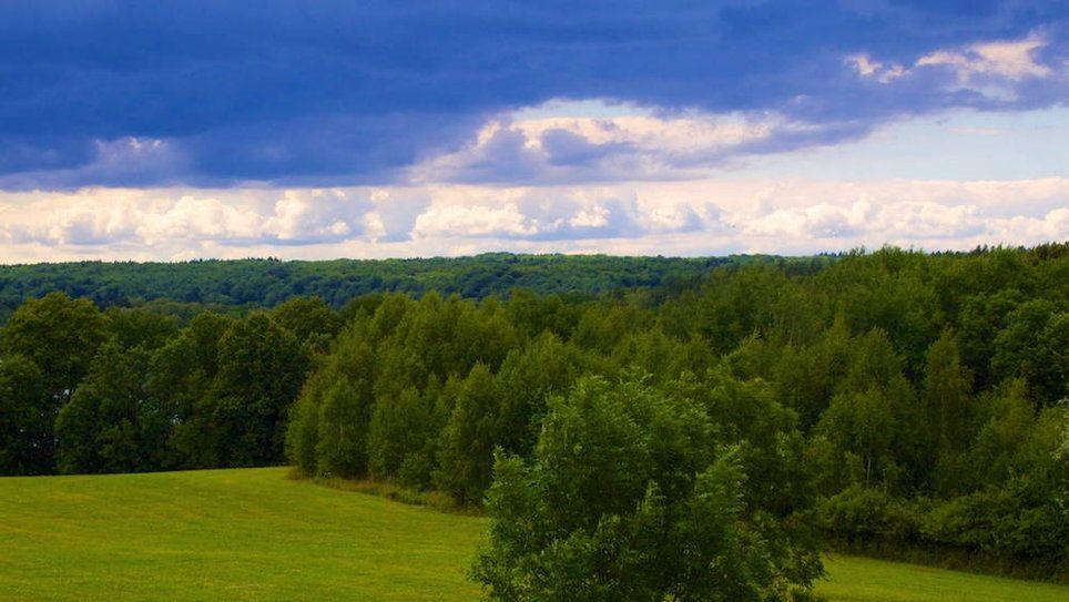 Nr. • Felder&Himmel • Landschaften • Bildgalerie Tapeten