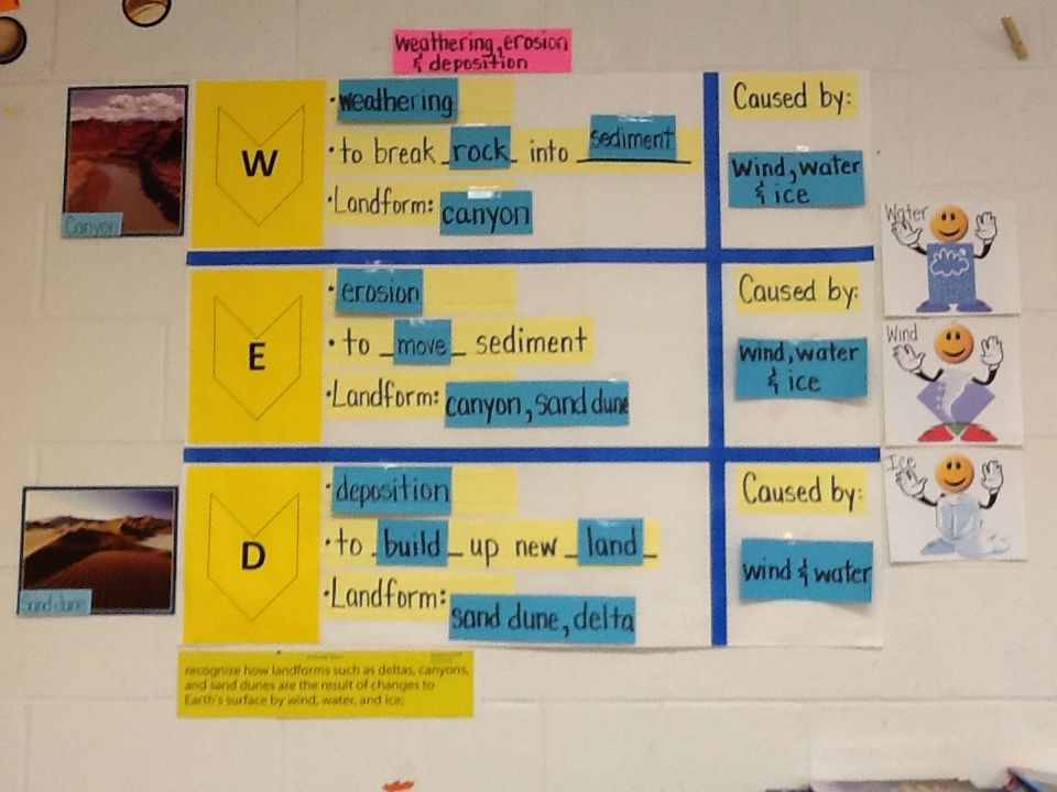 WED interactive word wall. TEK 5.7B | 5th grade science | Pinterest ...