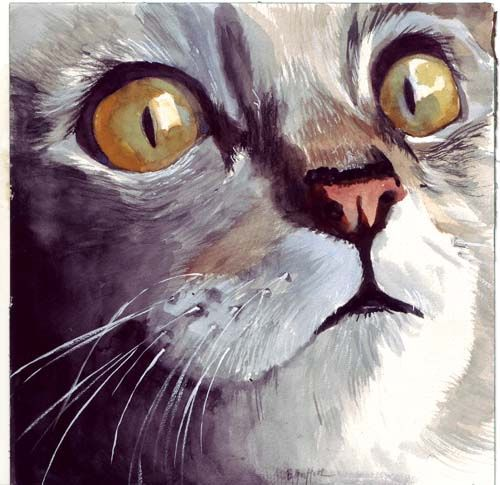 Cat Face Watercolor Painting Watercolor Cat Animal Paintings