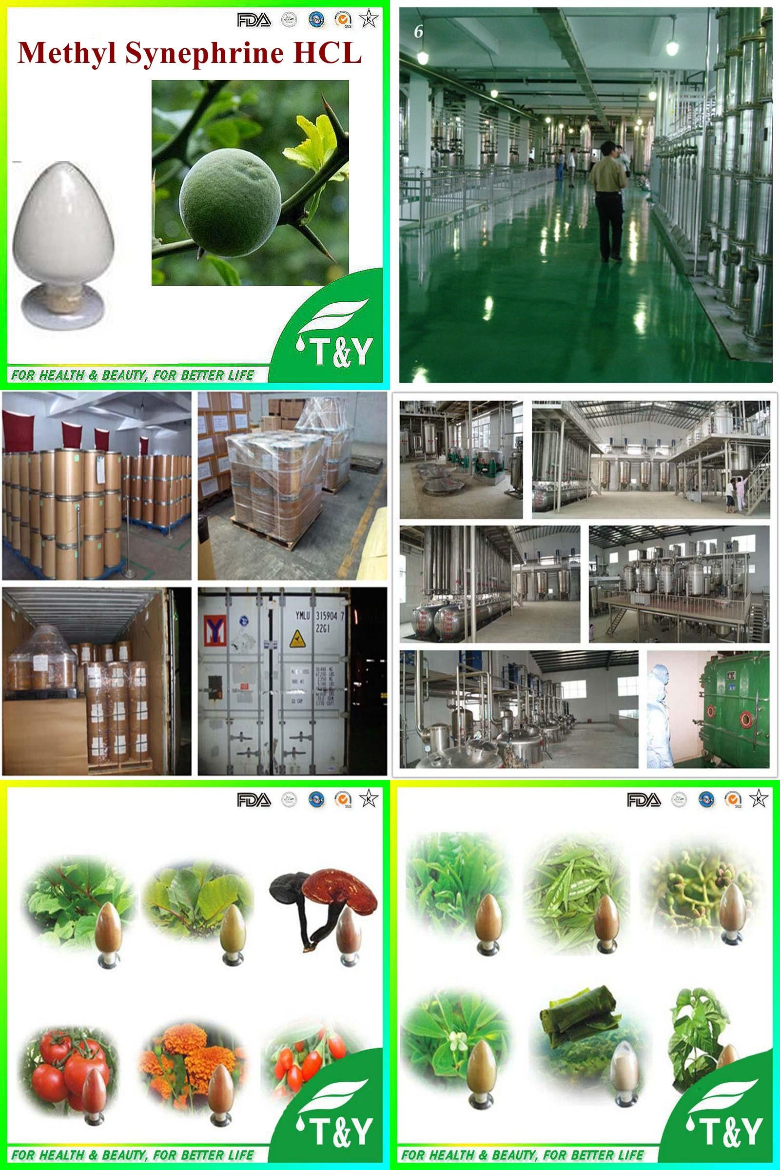 Visit To Buy Methyl Synephrine HCL 99 Hydrochloride Advertisement