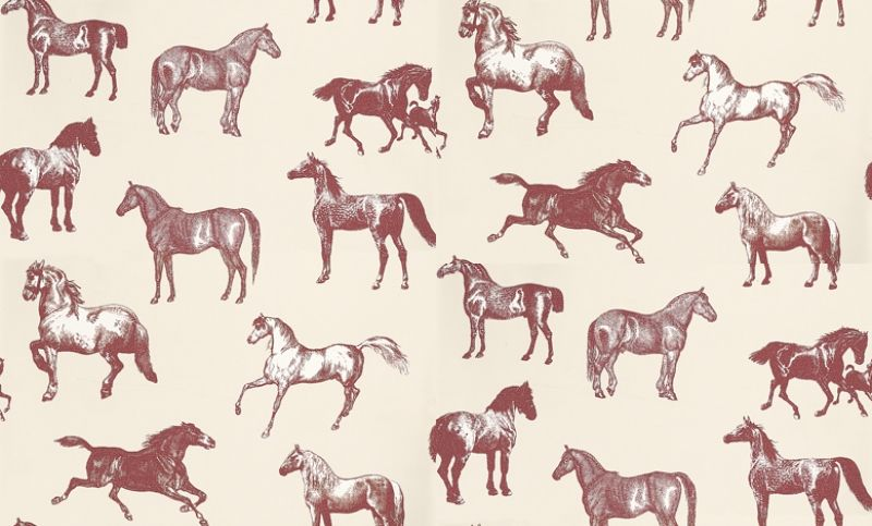 Collette 760 64 Sandberg Wallpapers A Stunning Horse Motif Design With Different Breeds Of Horse Drawn In A N Horse Wallpaper Pattern Art Horse Pattern