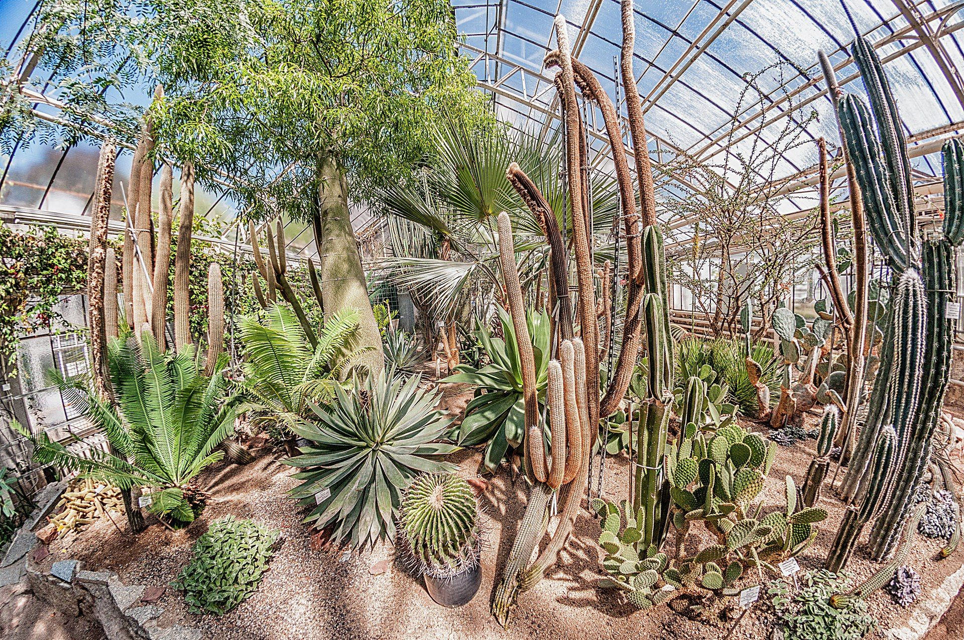 Botanischer Garten Heidelberg öffnungszeiten Sieht Aus Dass Wir