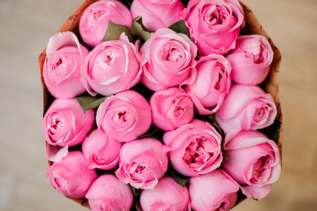 اجمل بوكيه ورد طبيعي خلفيات ورد طبيعي Zina Blog In 2021 Rose Plants Flowers
