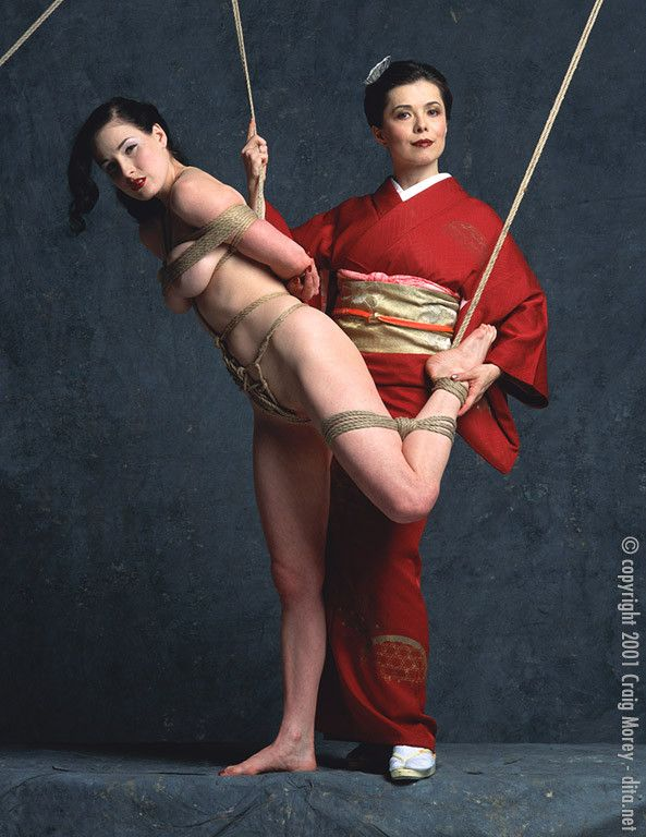 The seductive art of japanese bondage interesting