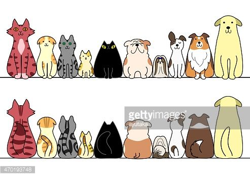 Vector Art Cartoon Cats And Dogs Sitting In A Horizontal Line
