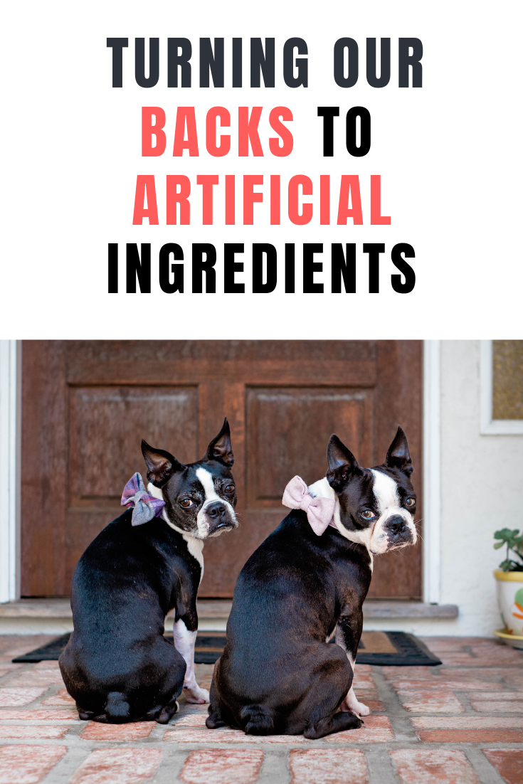 Join Us And Petco To Turn Our Backs To Artificial Ingredients Learn What Brands Are Moving Off The Shelf And Learn About Petco Petco Pet Health Dog Shedding