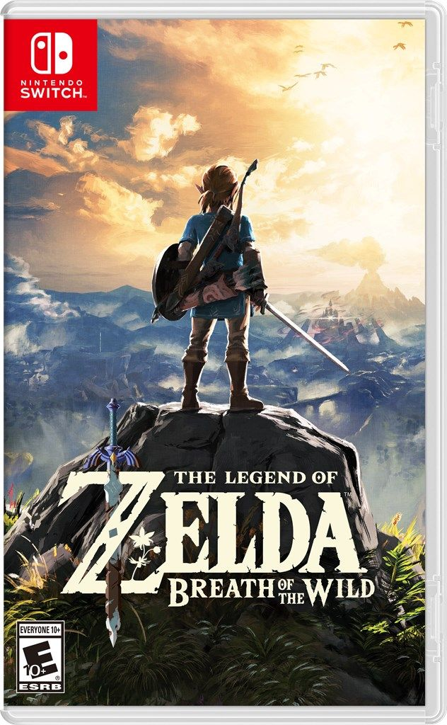 Image result for breath of the wild game case