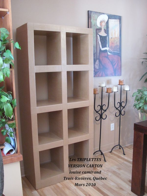 les triplettes mes premiers meubles tag re biblioth que carton cardboard furniture. Black Bedroom Furniture Sets. Home Design Ideas