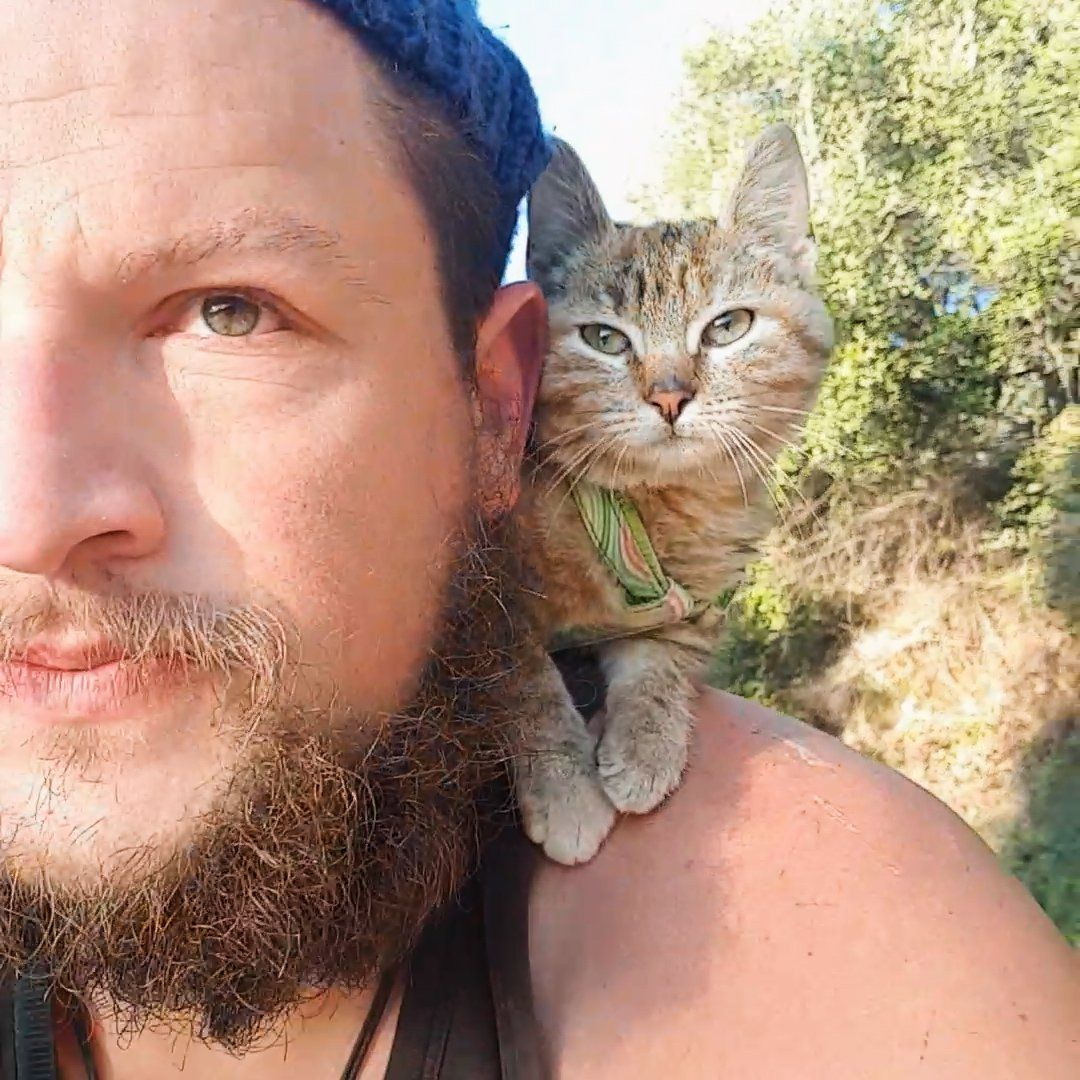 The Dodo On Twitter Guy Biking Across The World Finds A Kitten He Can T Leave Behind Cat Daddy Cats Guys
