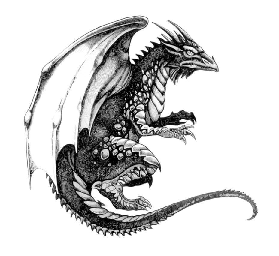 картинки для тату драконов для мужчин спиртной напиток