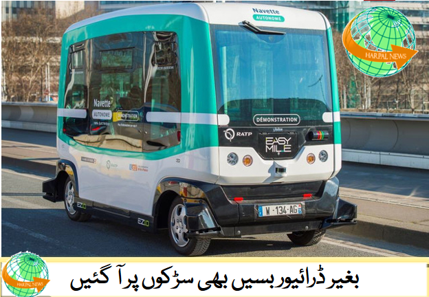 #harpalnewspk #harpalnews.com #bus