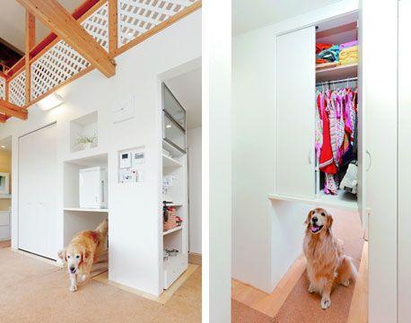 愛犬家住宅コーディネーターに聞く 犬のためのリフォーム術 愛犬家 家 犬