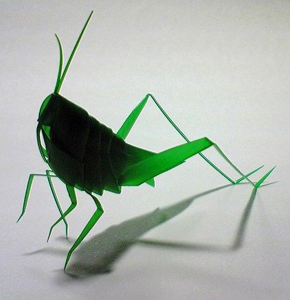 Wikihow to make a grasshopper from a plastic straw via for Plastic straw art