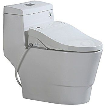 Terrific Woodbridge T 0008 Luxury Bidet Toilet Elongated One Piece Caraccident5 Cool Chair Designs And Ideas Caraccident5Info