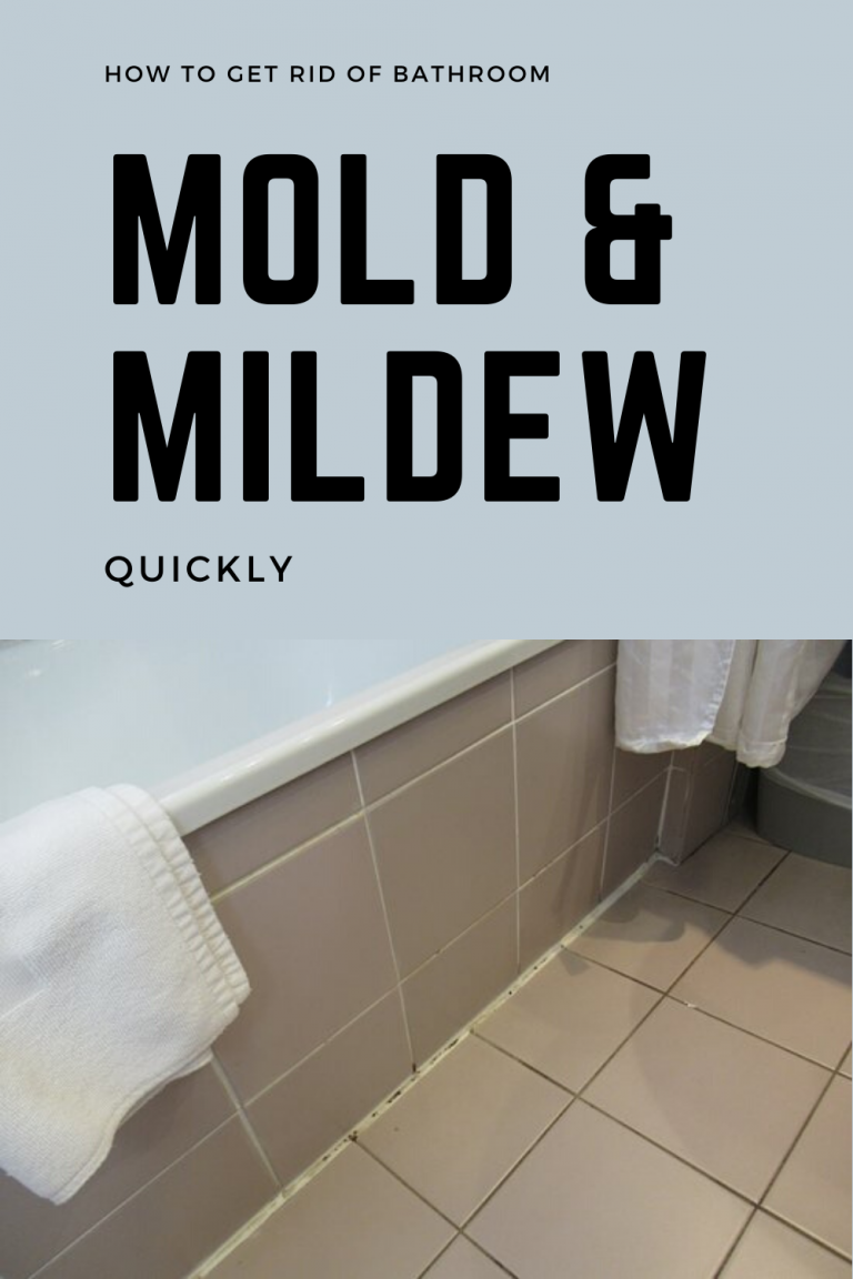 How To Get Rid Of Bathroom Mold And Mildew Quickly Cleaningtutorials Net Your Cleaning Solutions Mold In Bathroom Cleaning Mold Shower Mold
