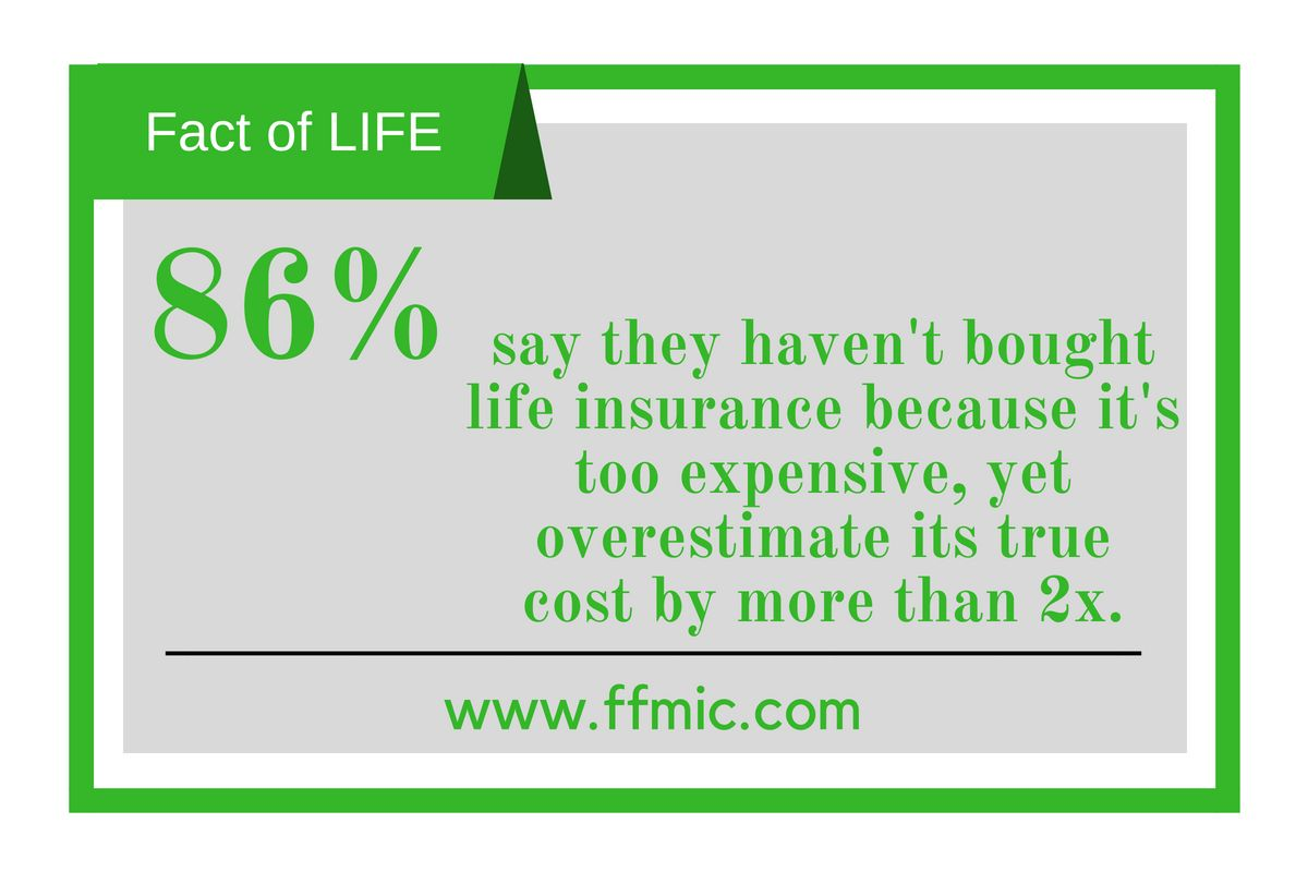 Financial Freedom Insurance 11 Hrs Factoflife 86 Say They