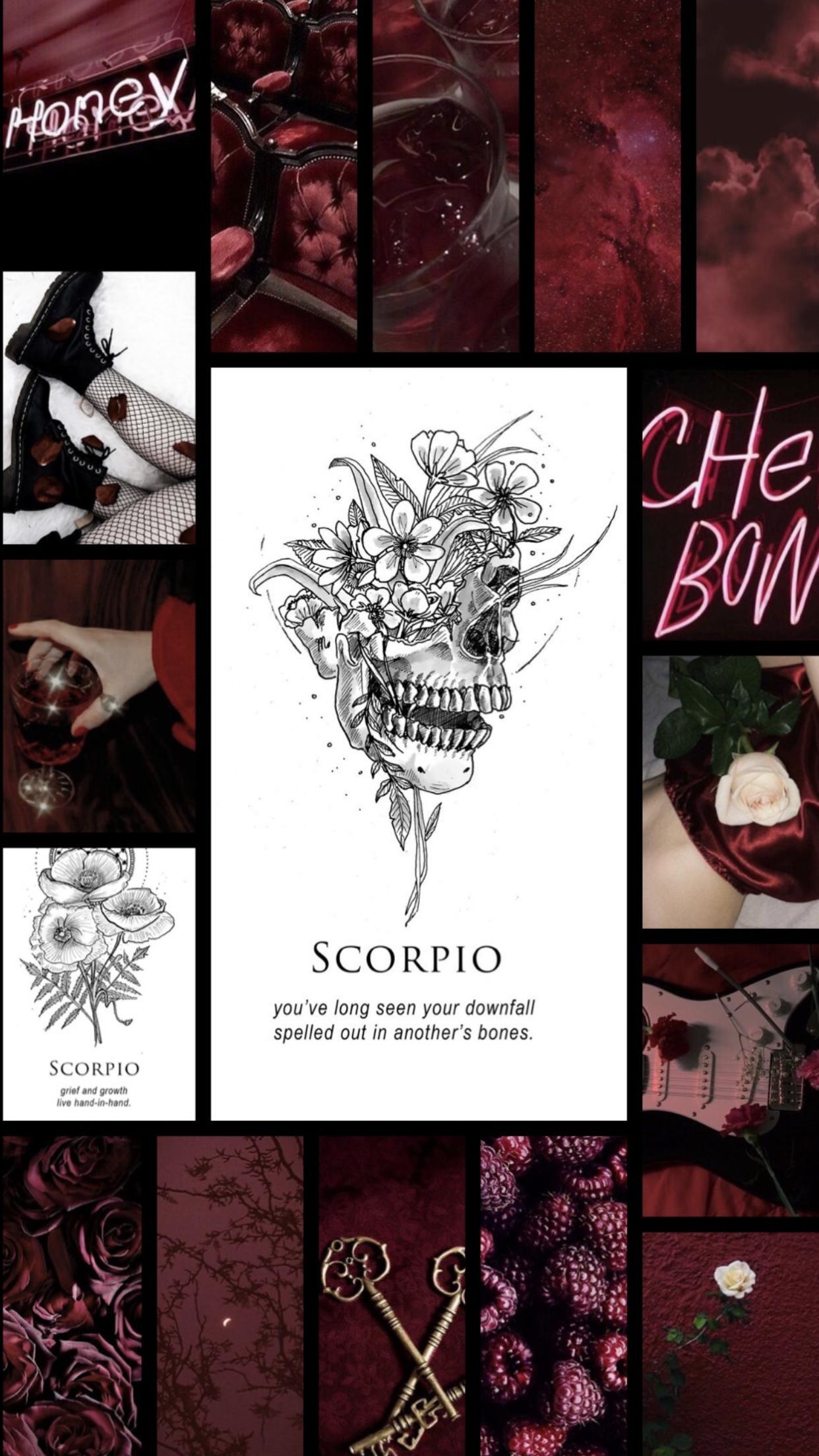 scorpio aesthetic wallpaper zodiac signs scorpio