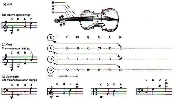 Violin : violin chords diagram Violin Chords Diagram plus Violin ...