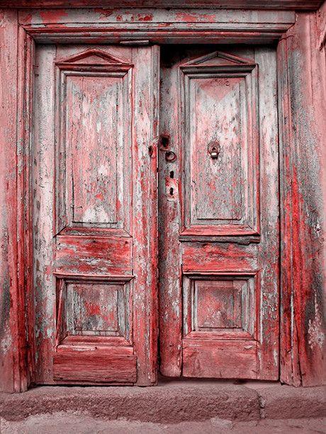 Scarlet Door & Scarlet Door Printed Photography Background / 9138 | Backdrops ...