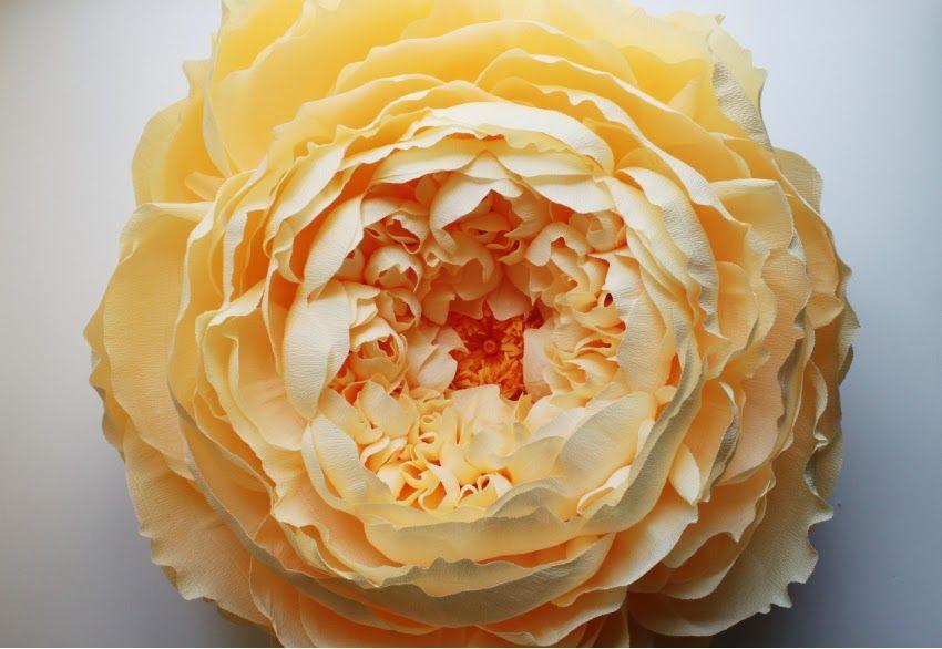 Giant Closed Crepe Paper Peony Paper Peonies Paper Flowers Diy