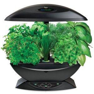 Boost Your Health With An Indoor Garden Indoor Garden 640 x 480