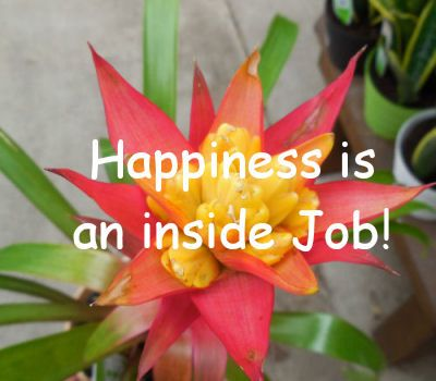 Happiness is an inside job quote.  http://thegardeningcook.com/inspirational-happiness-sayings/
