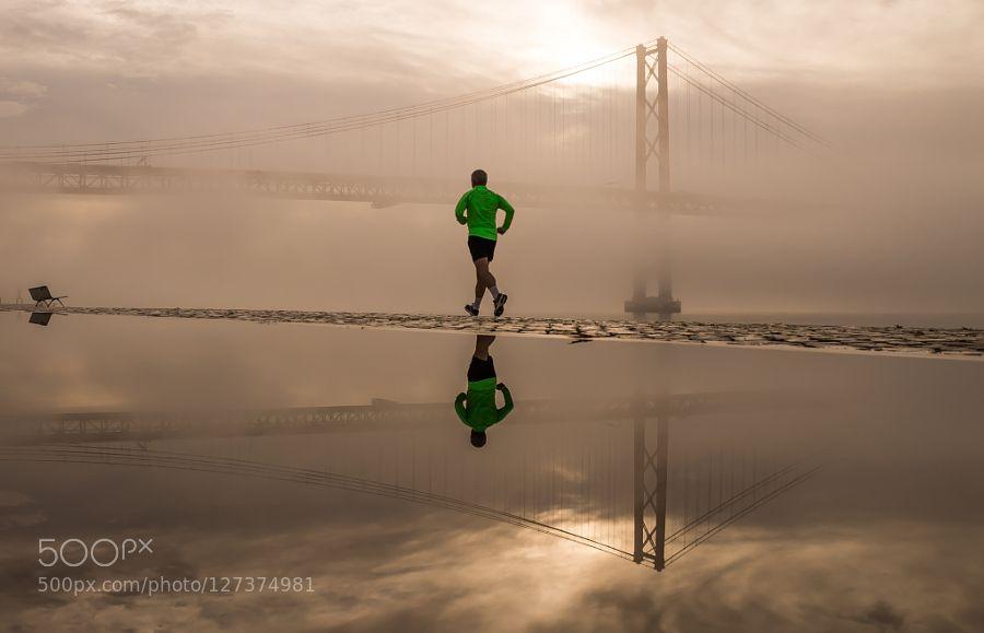 Misty Morning by Ricardo_Mateus. Please Like http://fb.me/go4photos and Follow @go4fotos Thank You. :-)