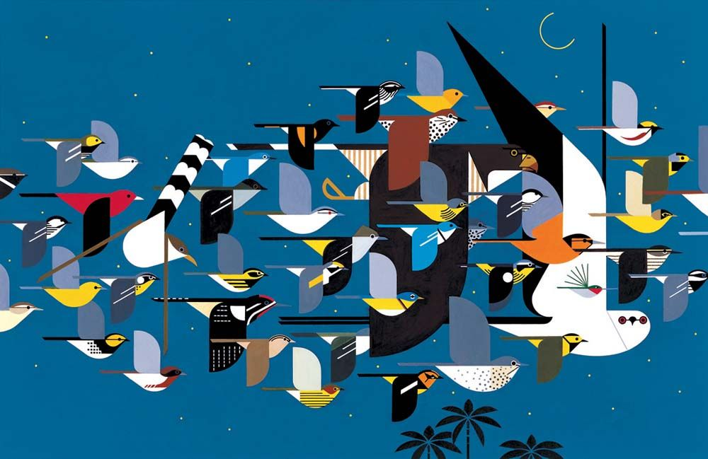 Mystery of missing migrants by Charley Harper