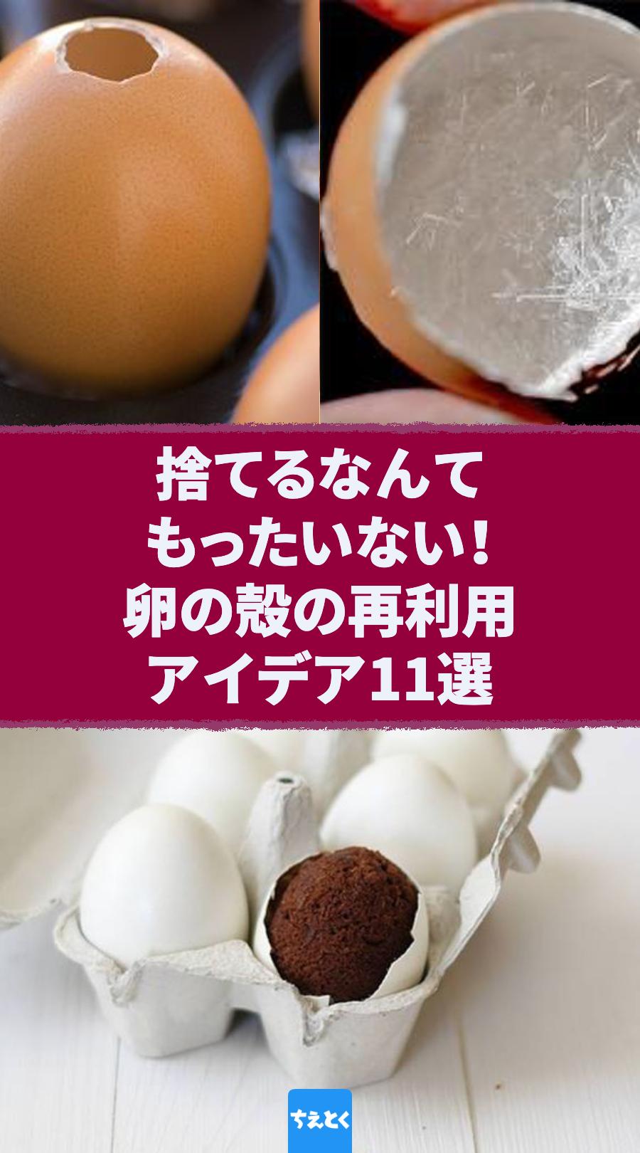 の 肥料 卵 殻