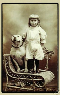 Pin By Luis Antonio On Pit In 2020 Vintage Dog Dog Pictures Nanny Dog