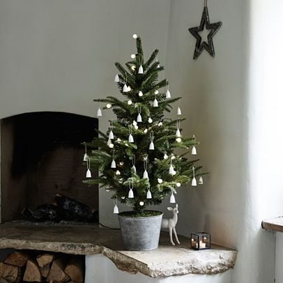 3ft Potted Spruce Christmas Tree Christmas Trees Christmas
