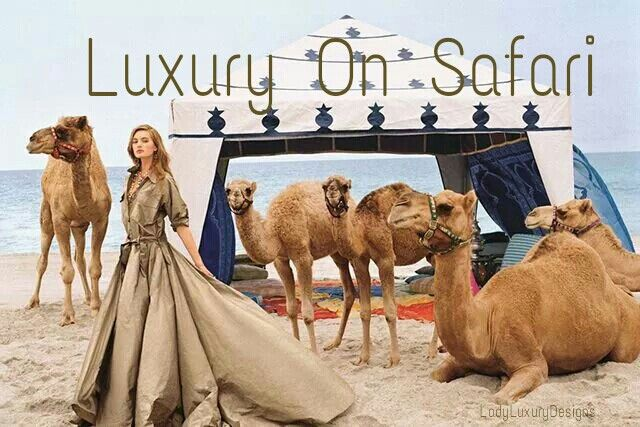 Luxury On Safari- | LadyLuxuryDesigns