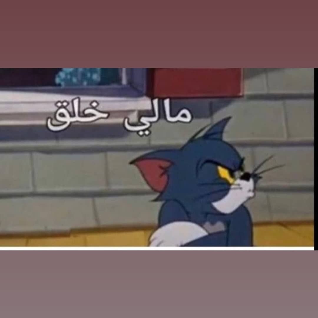 Pin By ليان العنزي On رياكشنات Funny Picture Jokes Dora Funny Funny Reaction Pictures
