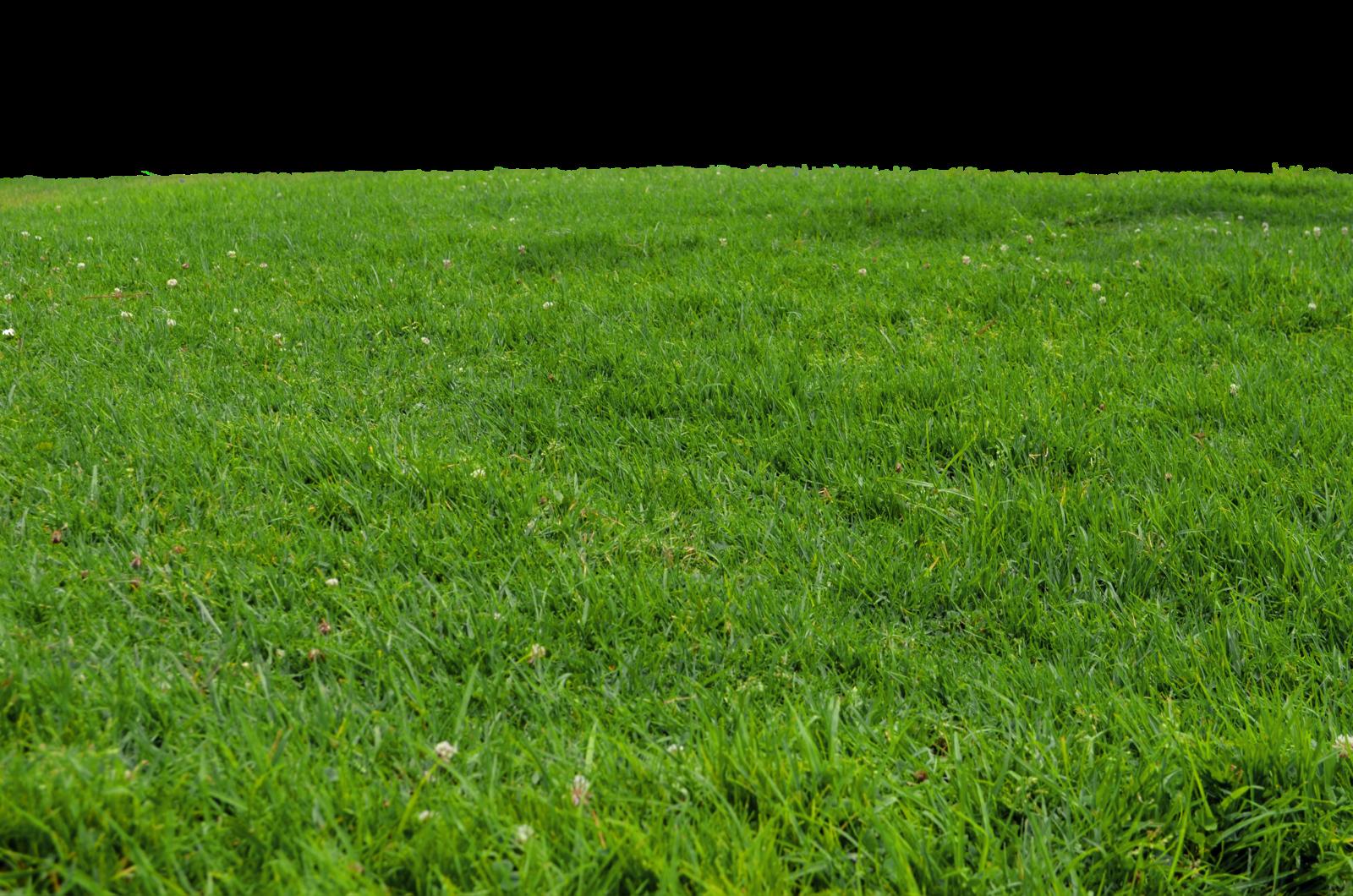 Grass Realistic Fabric Material Landscape Benartex 100/% Cotton New Last Piece