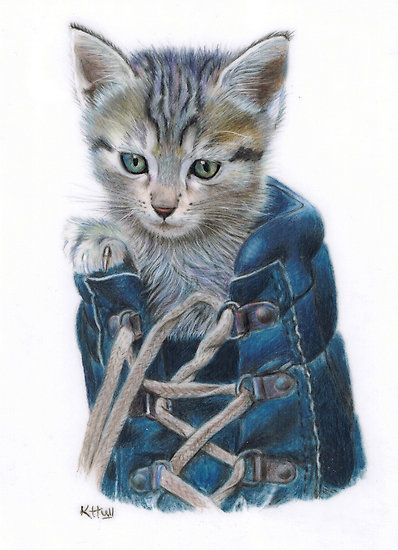 Kitten In A Shoe By Karen Hull Color Pencil Art Pencil Drawings