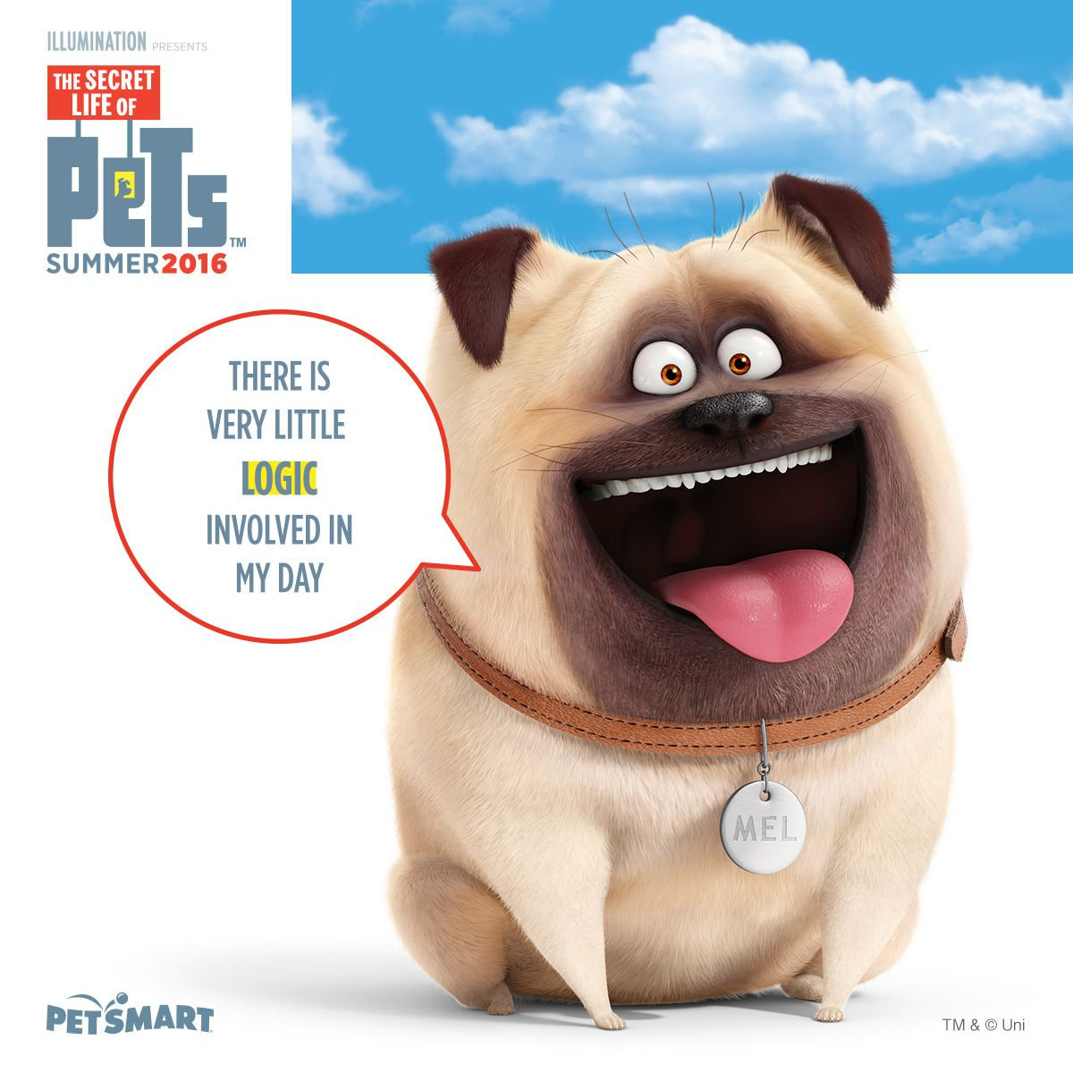 Pin On The Secret Life Of Pets Petsmart