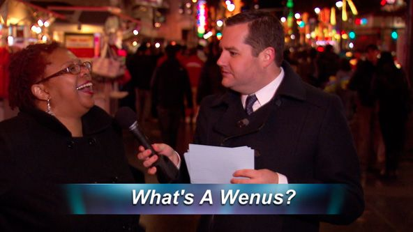 Find Out What a Wenus Really Is!