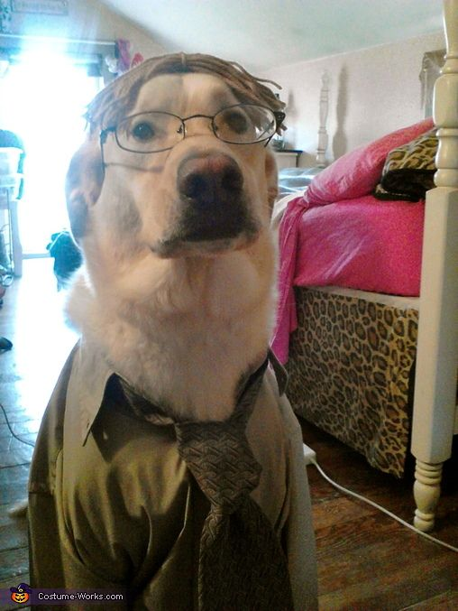 Dwight Schrute Dog Halloween Costume Contest At Costume Works