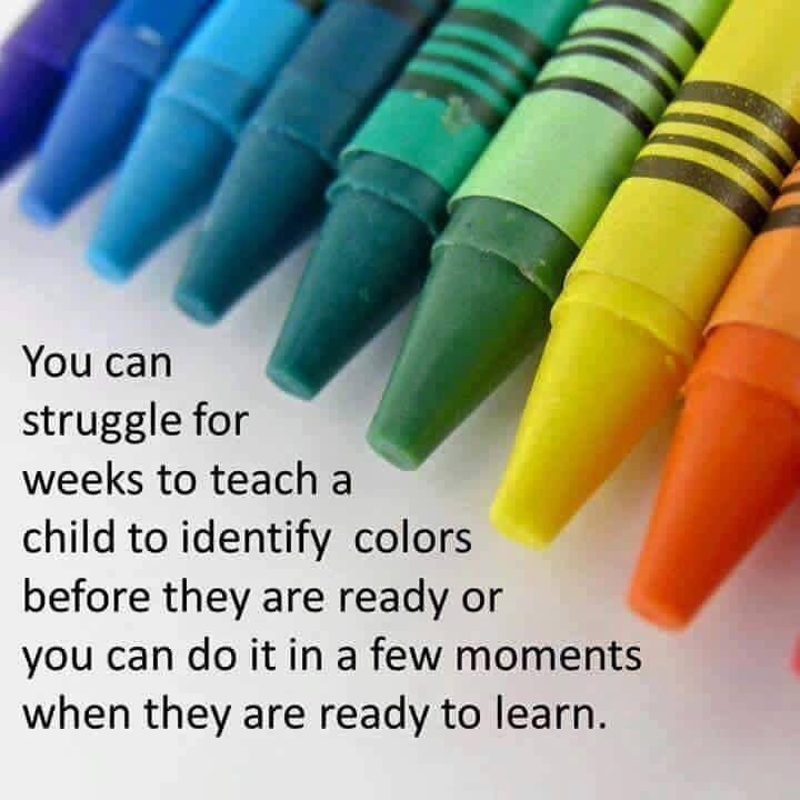 Follow the child, sensitive periods, Montessori