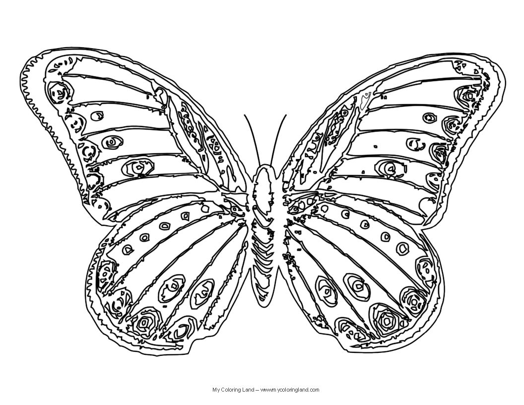 Colouring in pages for girls butterflies - Advanced Coloring Pages Flowers Bing Images