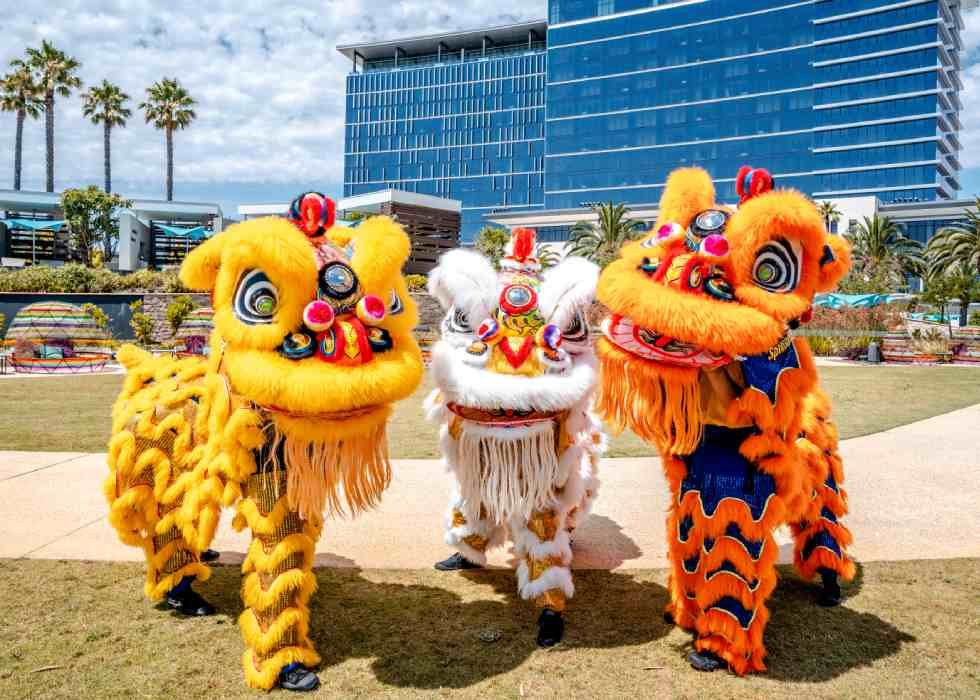 Chinese New Year Events in Perth Buggybuddys guide to