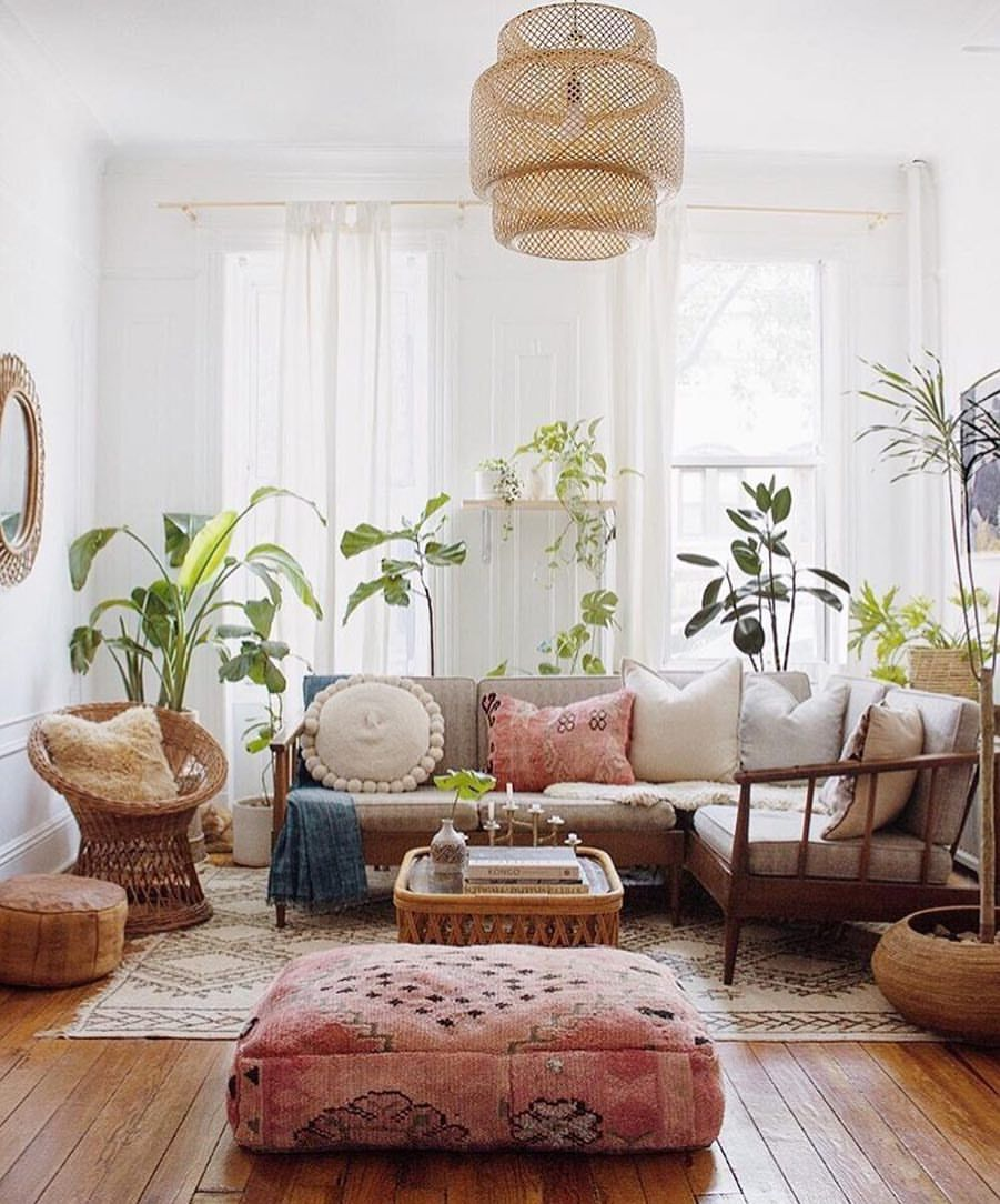 2,096 Likes, 18 Comments - House Plant Club (@houseplantclub) on ...