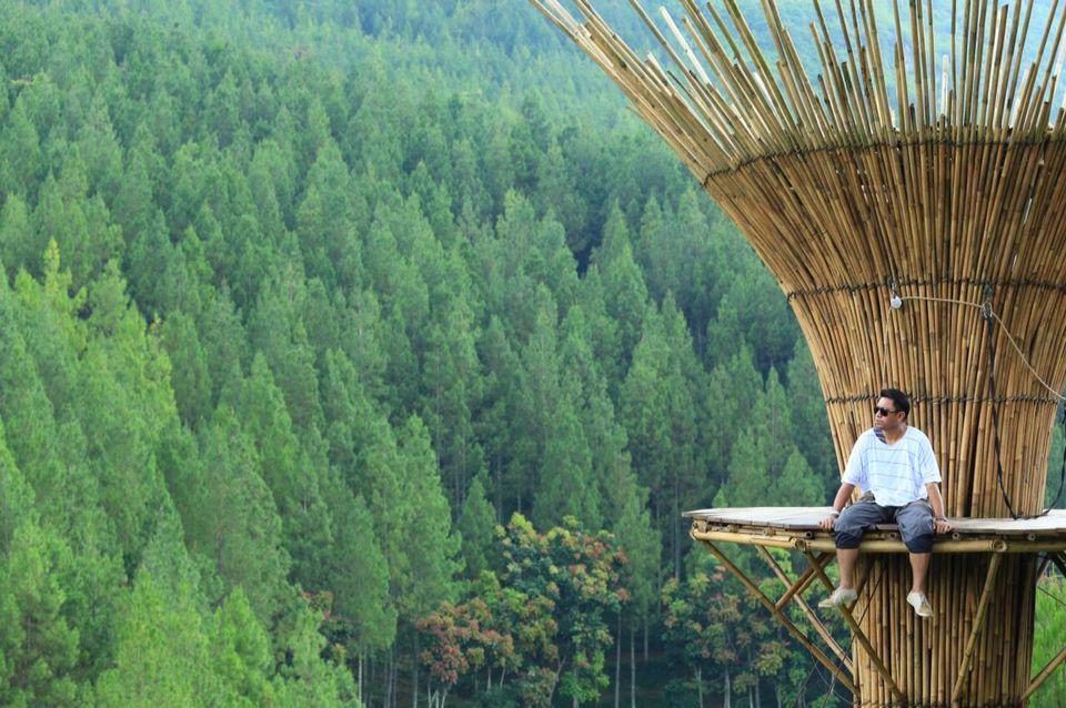 Kebun Pinus Maribaya