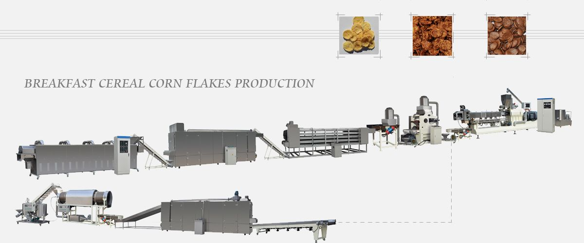 Snack|Pet Food Extrusion Machines - Best Possible Food Extrusion