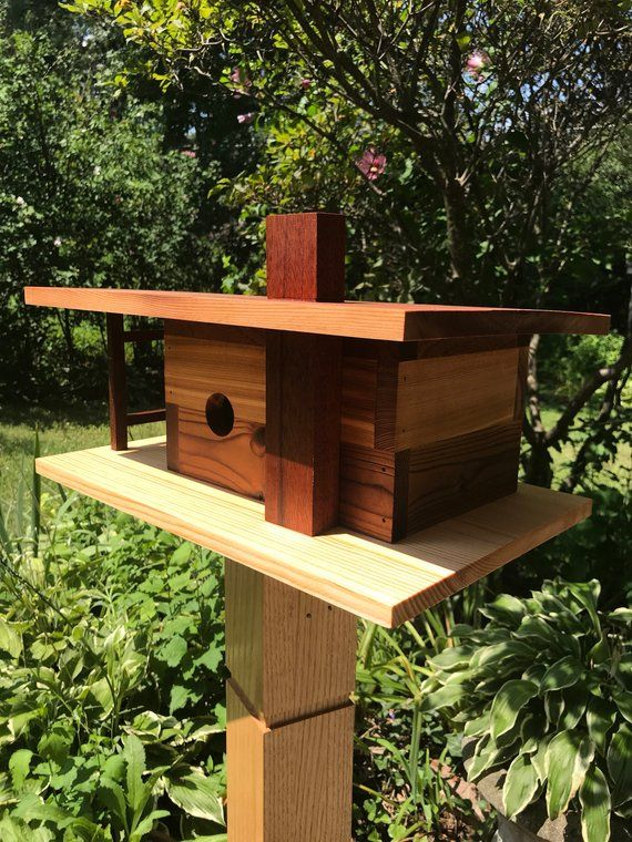 123 Safe Haven Ave Products Bird House Plans Bird