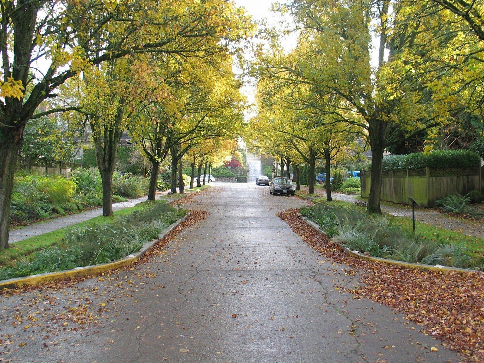 Portland Green Streets : Traffic Calming SuDS   Streets ...