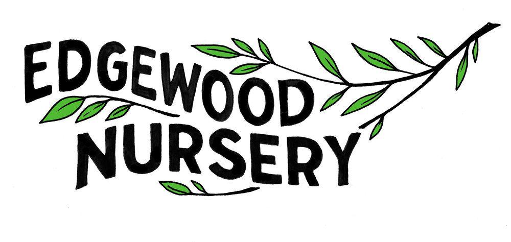 Edgewood Nursery Falmouth Me Nursery Edgewood Medicinal Plants