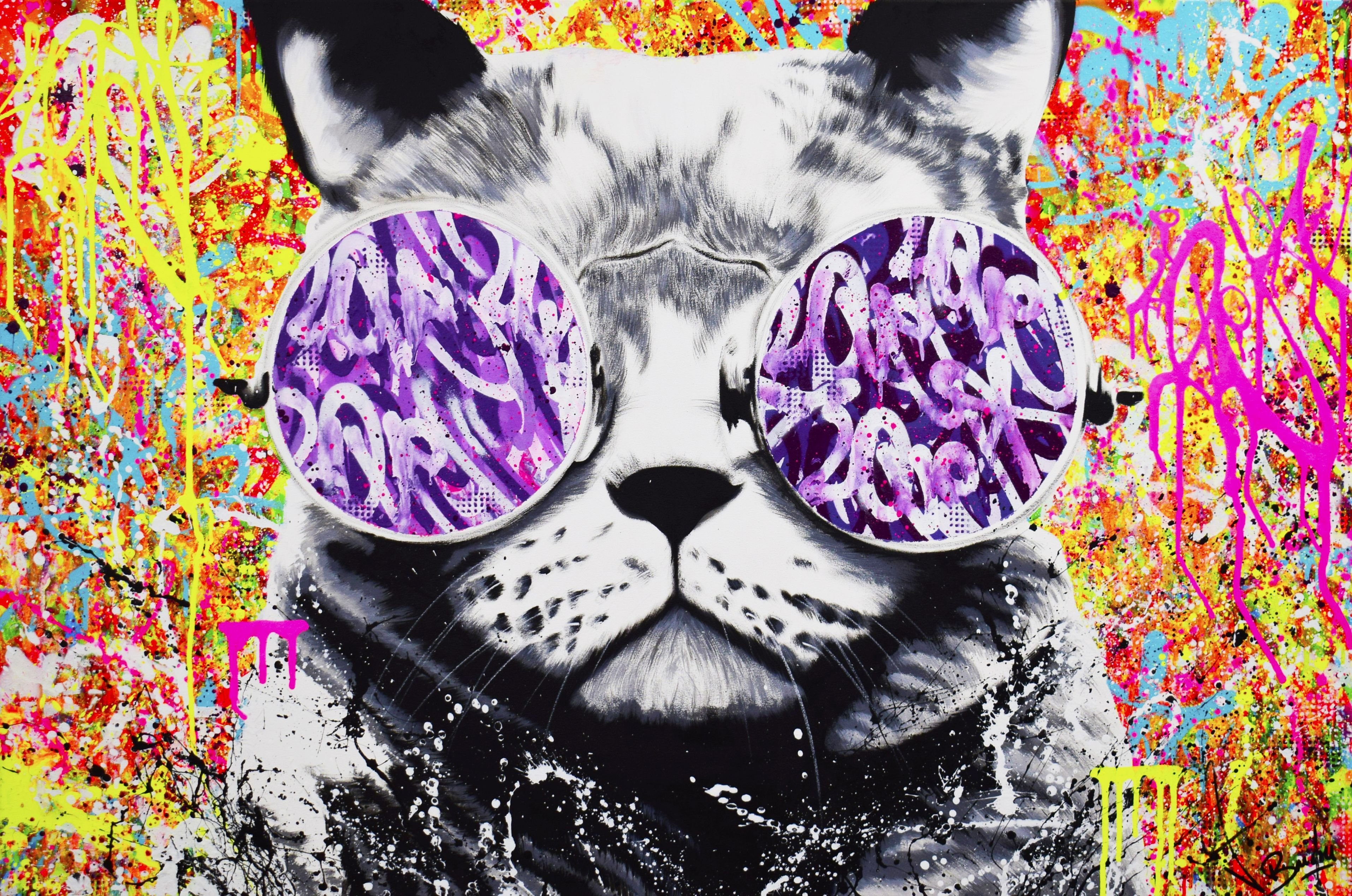 Hippie Cat Spray Paint On Canvas Graffiti Art