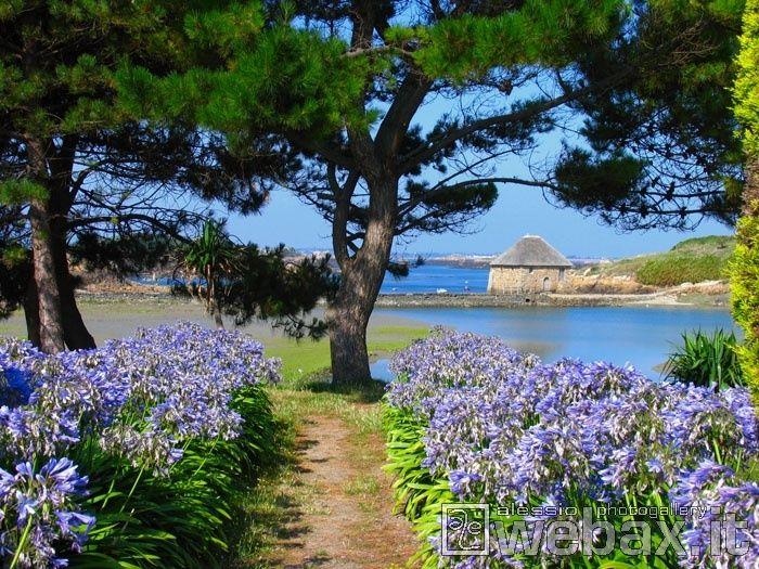 Ile De Brehat Cotes D Armor Brittany France France Travel Beautiful Landscapes