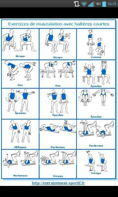Dumbbell Gym Workouts Sport Fitness Gym Time